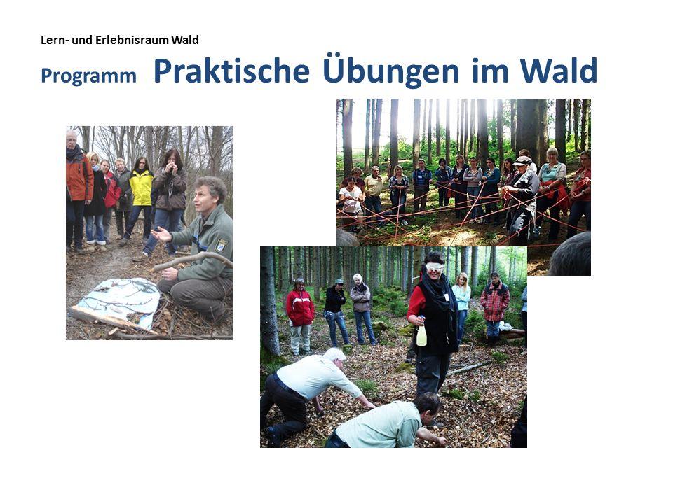 Lern- und Erlebnisraum Wald Programm Praktische Übungen im Wald
