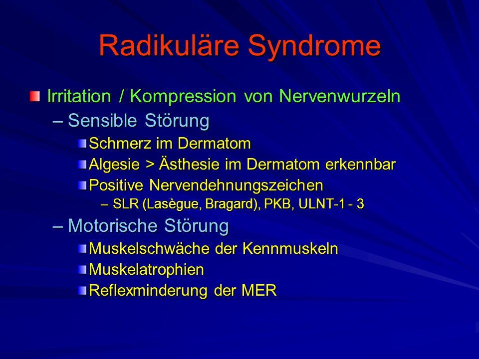 Radikuläre Syndrome Irritation / Kompression von Nervenwurzeln –Sensible Störung Schmerz im Dermatom Algesie > Ästhesie im Dermatom erkennbar Positive