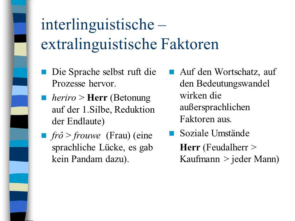 interlinguistische – extralinguistische Faktoren Die Sprache selbst ruft die Prozesse hervor.