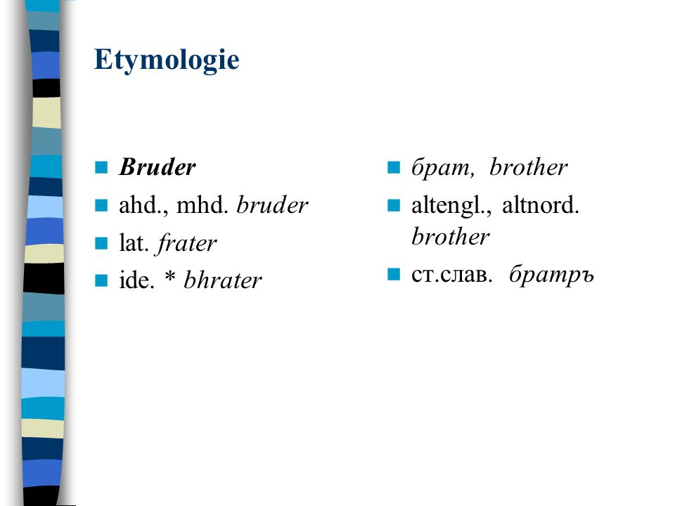 Etymologie Bruder ahd., mhd. bruder lat. frater ide. * bhrater брат, brother altengl., altnord. brother ст.слав. братръ