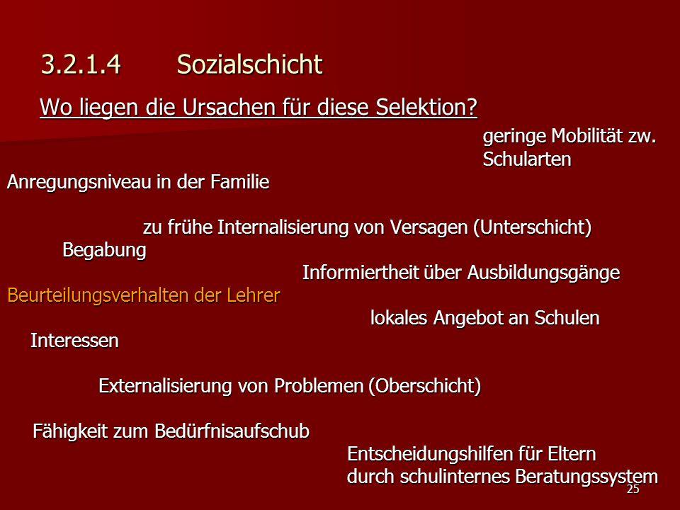 25 3.2.1.4 Sozialschicht Wo liegen die Ursachen für diese Selektion.