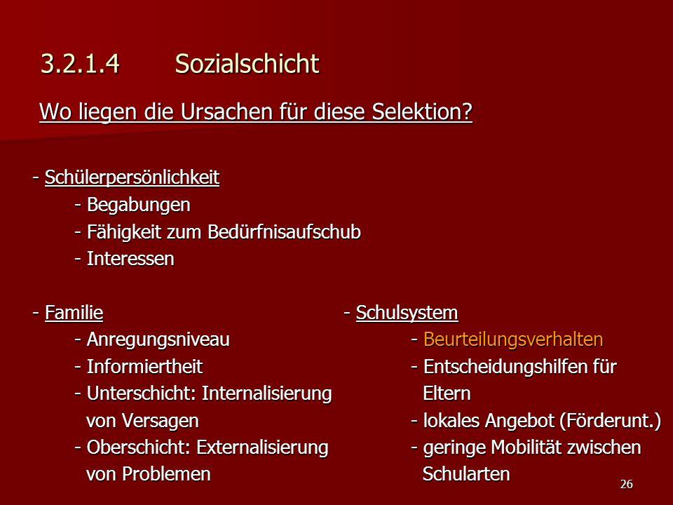 26 3.2.1.4 Sozialschicht Wo liegen die Ursachen für diese Selektion.
