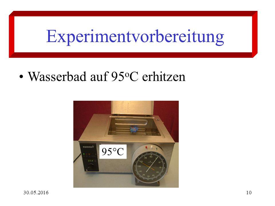 30.05.201610 Experimentvorbereitung Wasserbad auf 95 o C erhitzen 95°C