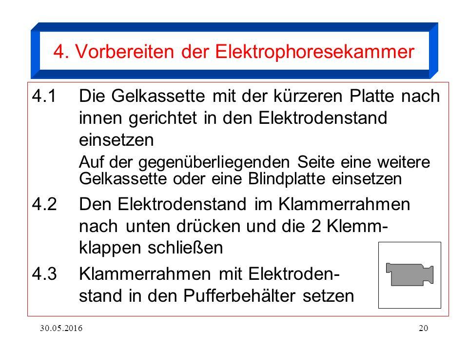 30.05.201620 4. Vorbereiten der Elektrophoresekammer 4.1 Die Gelkassette mit der kürzeren Platte nach innen gerichtet in den Elektrodenstand einsetzen