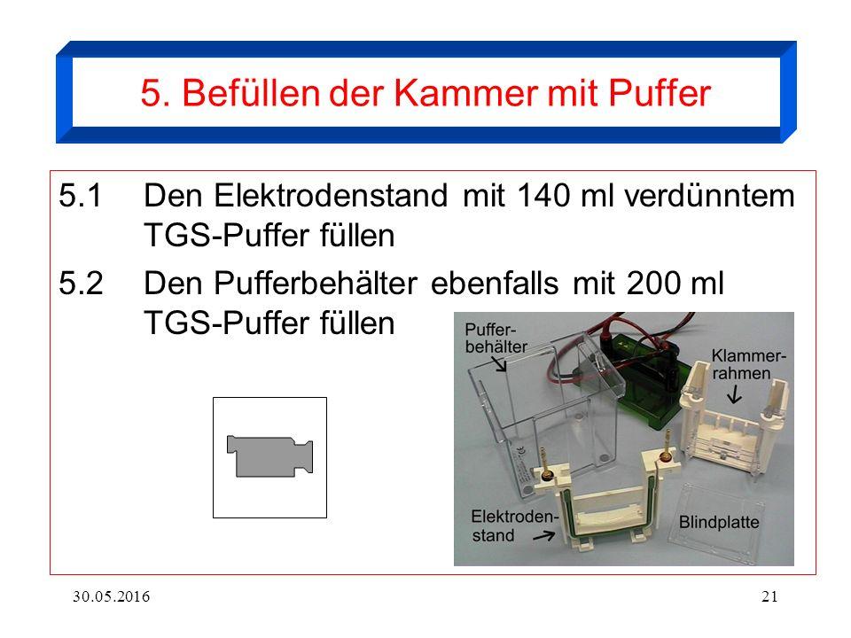 30.05.201621 5. Befüllen der Kammer mit Puffer 5.1Den Elektrodenstand mit 140 ml verdünntem TGS-Puffer füllen 5.2Den Pufferbehälter ebenfalls mit 200