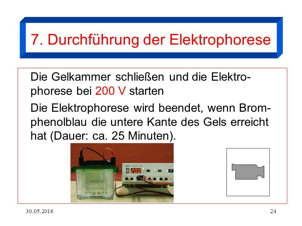 30.05.201624 7. Durchführung der Elektrophorese Die Gelkammer schließen und die Elektro- phorese bei 200 V starten Die Elektrophorese wird beendet, we