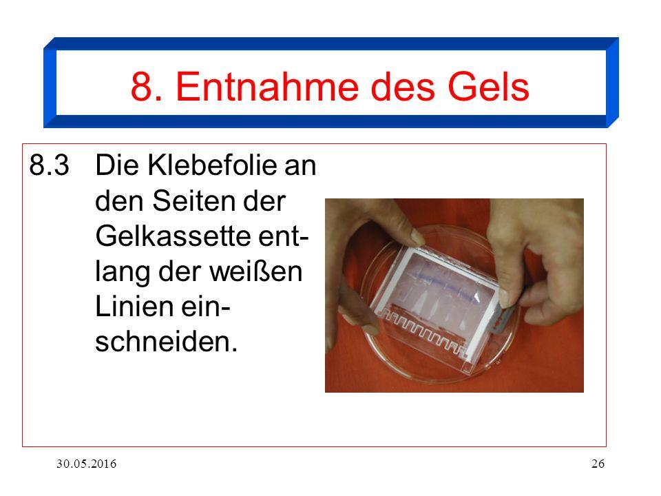 30.05.201626 8. Entnahme des Gels 8.3Die Klebefolie an den Seiten der Gelkassette ent- lang der weißen Linien ein- schneiden.
