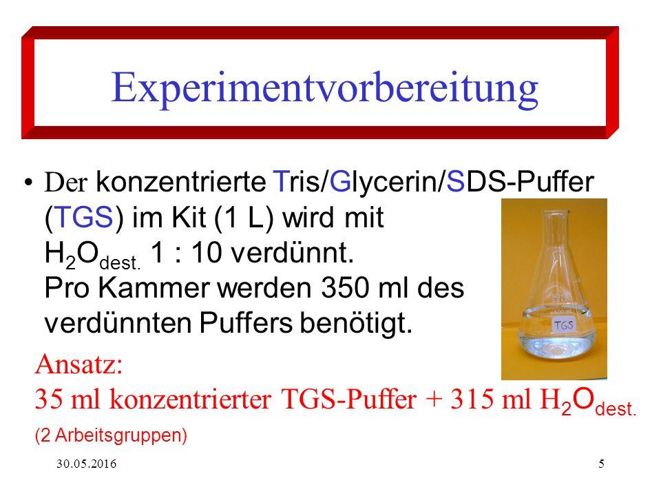 30.05.20165 Experimentvorbereitung Der konzentrierte Tris/Glycerin/SDS-Puffer (TGS) im Kit (1 L) wird mit H 2 O dest.