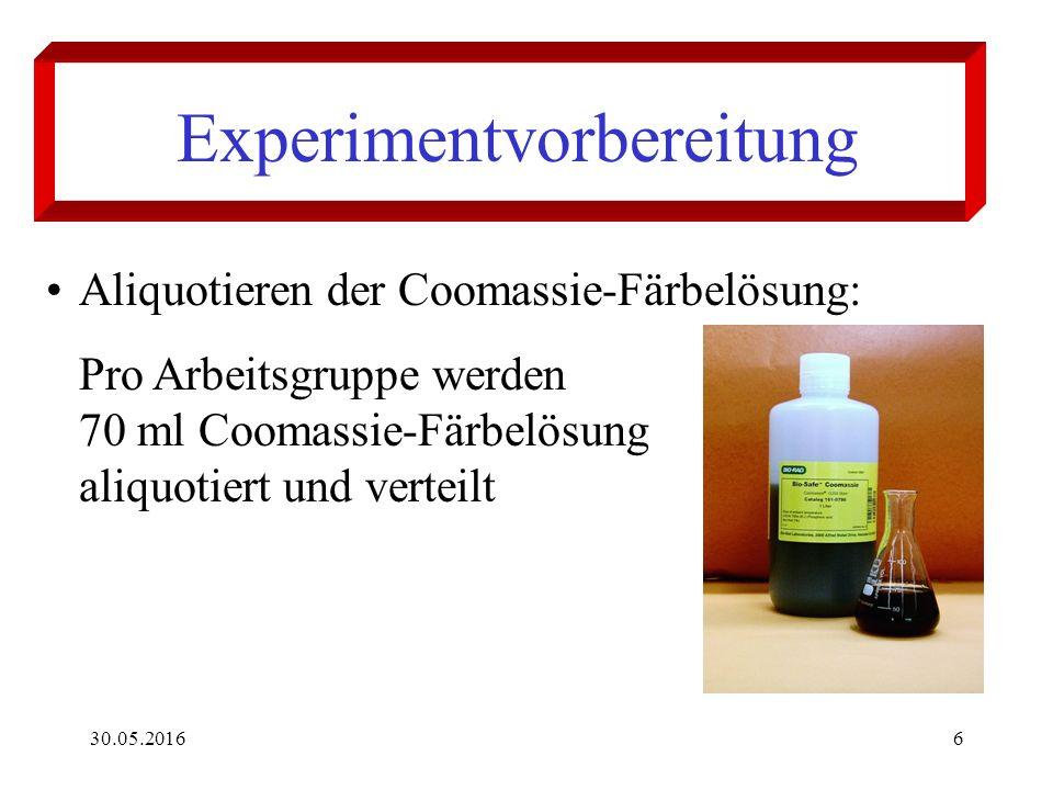 30.05.20166 Experimentvorbereitung Aliquotieren der Coomassie-Färbelösung: Pro Arbeitsgruppe werden 70 ml Coomassie-Färbelösung aliquotiert und verteilt