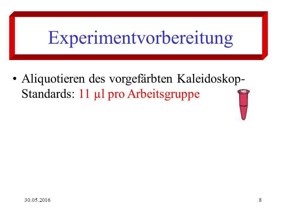 30.05.20169 Experimentvorbereitung Rehydratisieren und aliquotieren des Actin- Myosin-Standards: - Ins Gefäß des lyophilisierten Standards 500 µl Lämmli-Puffer pipettieren - 5 Min.