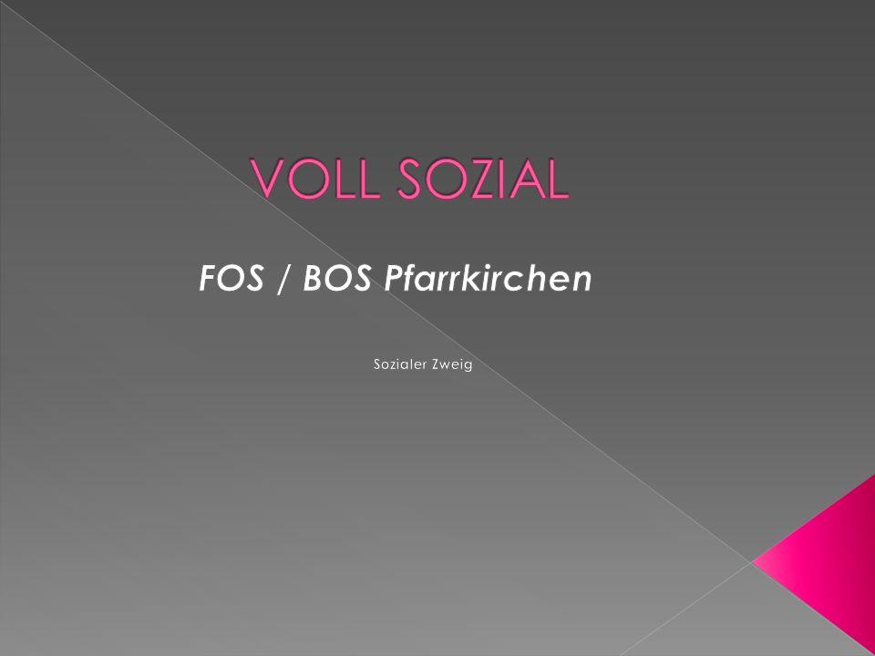 Bevor du dich für die FOS/BOS PAN anmeldest, solltest du dir überlegt haben, welcher Zweig dir persönlich zusagt.