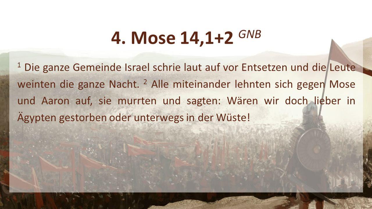 4. Mose 14,1+2 GNB 1 Die ganze Gemeinde Israel schrie laut auf vor Entsetzen und die Leute weinten die ganze Nacht. 2 Alle miteinander lehnten sich ge