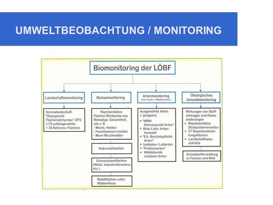 UMWELTBEOBACHTUNG / MONITORING