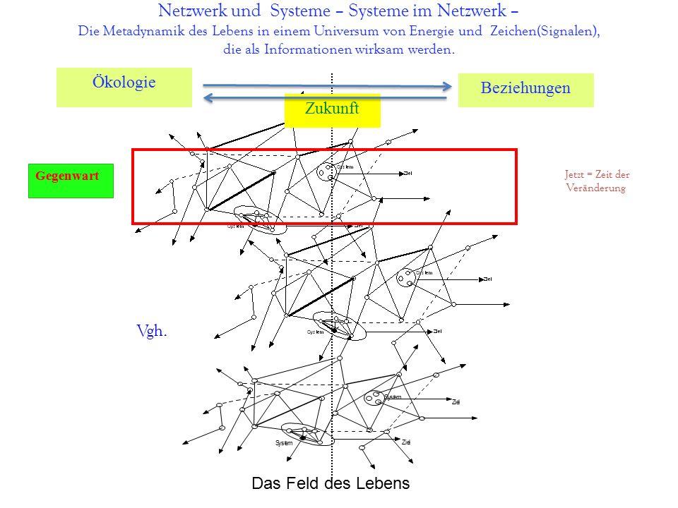 Netzwerk und Systeme – Systeme im Netzwerk – Die Metadynamik des Lebens in einem Universum von Energie und Zeichen(Signalen), die als Informationen wirksam werden.