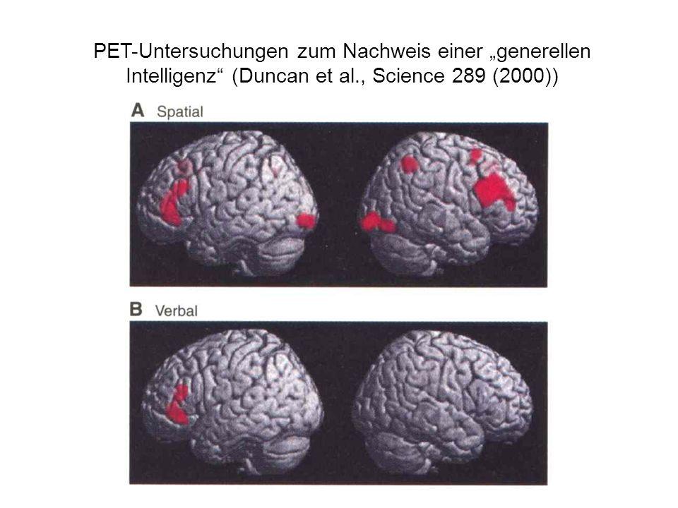 """PET-Untersuchungen zum Nachweis einer """"generellen Intelligenz (Duncan et al., Science 289 (2000))"""