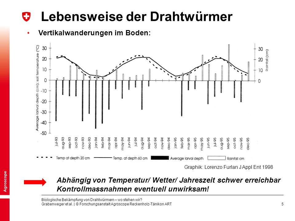 5 Vertikalwanderungen im Boden: Lebensweise der Drahtwürmer Graphik: Lorenzo Furlan J Appl Ent 1998 Abhängig von Temperatur/ Wetter/ Jahreszeit schwer