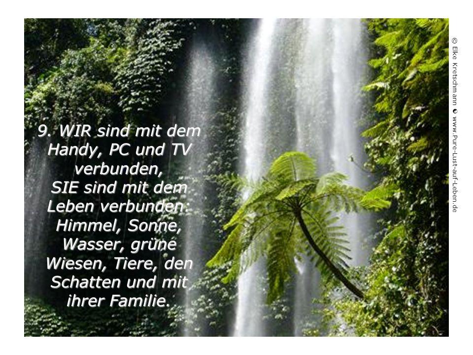 8.Um UNS zu schützen, leben wir von Mauern umgeben, SIE leben mit offenen Türen und von Freunden umgeben. © Elke Kretschmann  www.Pure-Lust-auf-Leben