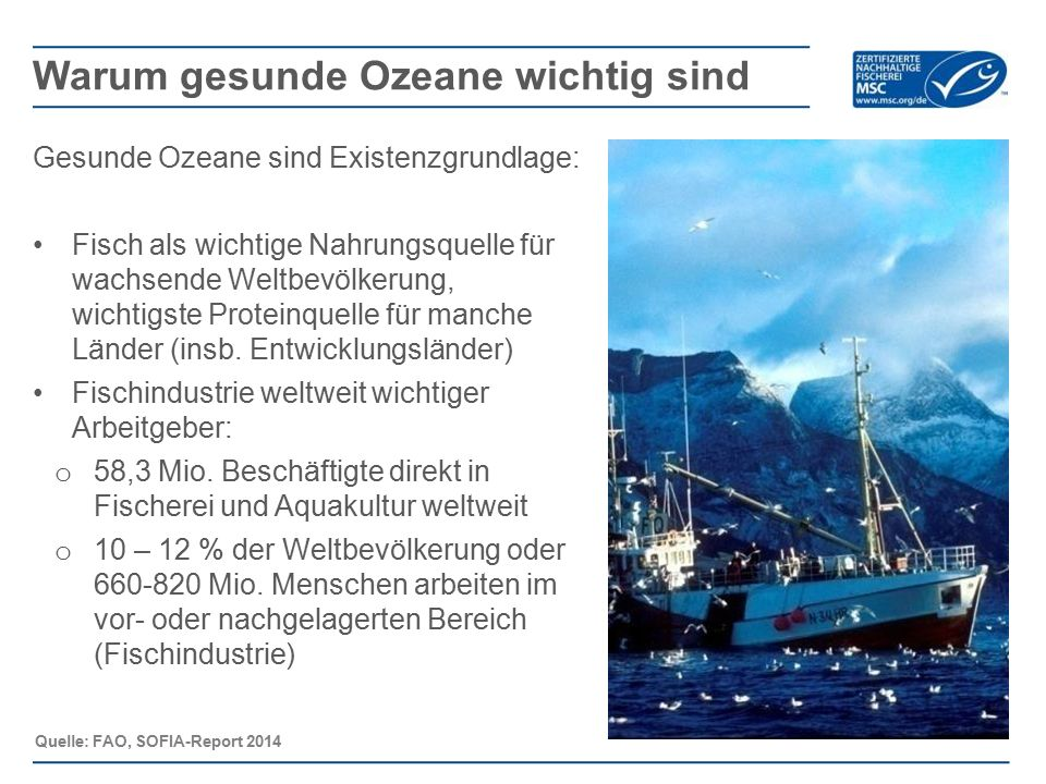 Weltweit sind knapp 2.700 Unternehmen MSC-zertifiziert Weltweit gibt es über 23.000 Produkte mit MSC-Siegel, davon etwa: 5.700 in Deutschland, 1.300 in Österreich, 1.000 in der Schweiz Etwa 52% des in DE verkauften Fischs aus Wildfang ist MSC-zertifiziert Über 50% der deutschen Fisch essenden Verbraucher haben das blaue MSC-Siegel schon einmal gesehen.