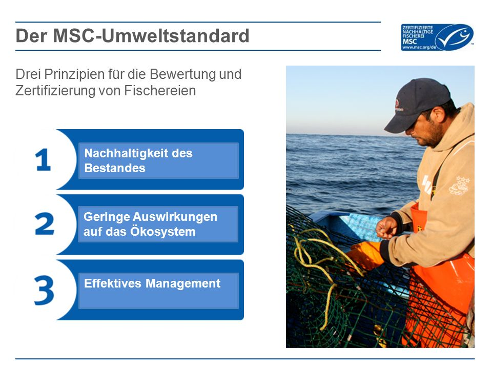 Drei Prinzipien für die Bewertung und Zertifizierung von Fischereien Der MSC-Umweltstandard Nachhaltigkeit des Bestandes Geringe Auswirkungen auf das Ökosystem Effektives Management