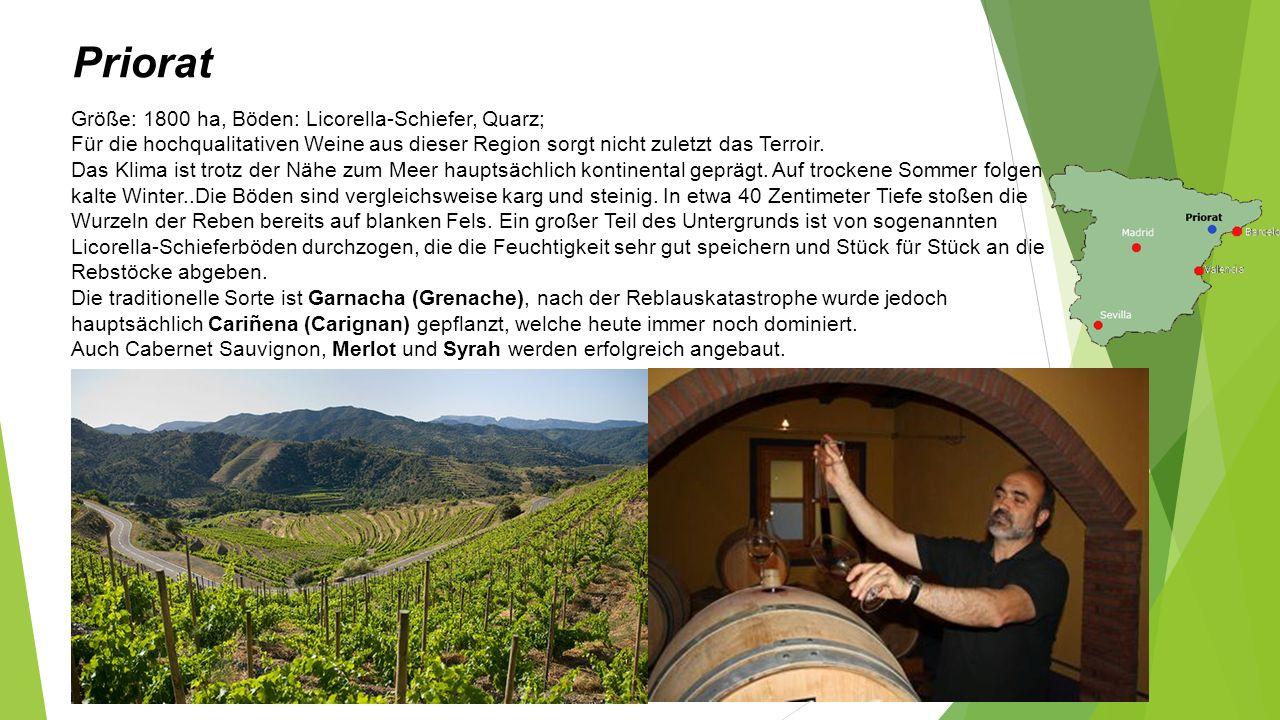 Priorat Größe: 1800 ha, Böden: Licorella-Schiefer, Quarz; Für die hochqualitativen Weine aus dieser Region sorgt nicht zuletzt das Terroir.