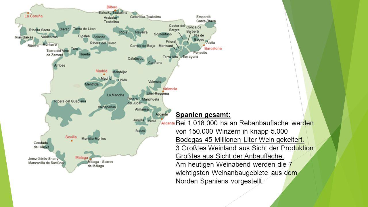 Spanien gesamt: Bei 1.018.000 ha an Rebanbaufläche werden von 150.000 Winzern in knapp 5.000 Bodegas 45 Millionen Liter Wein gekeltert.