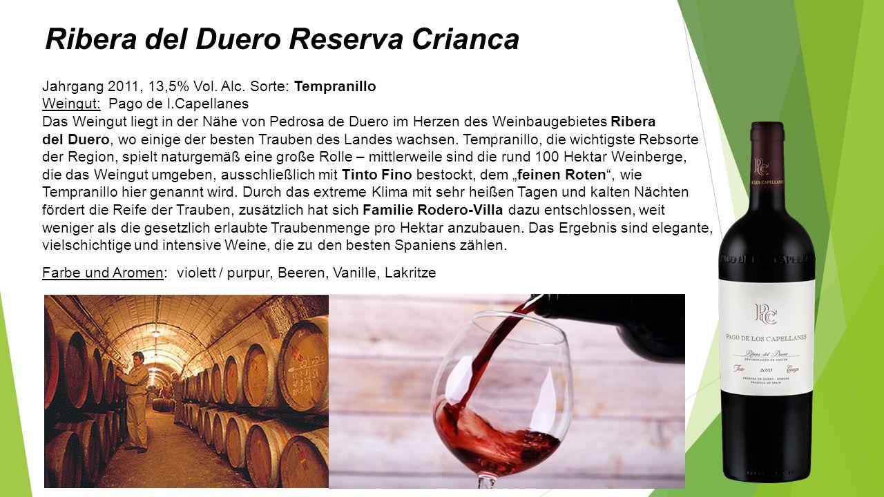 Ribera del Duero Reserva Crianca Jahrgang 2011, 13,5% Vol.