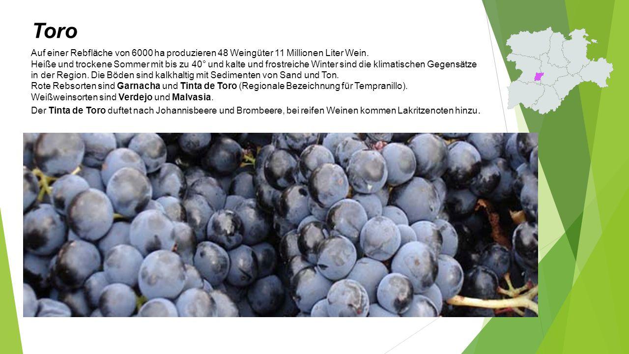Toro - Almirez Jahrgang 2013, 14,5% Vol.Alc. Sorte: Tempranillo.