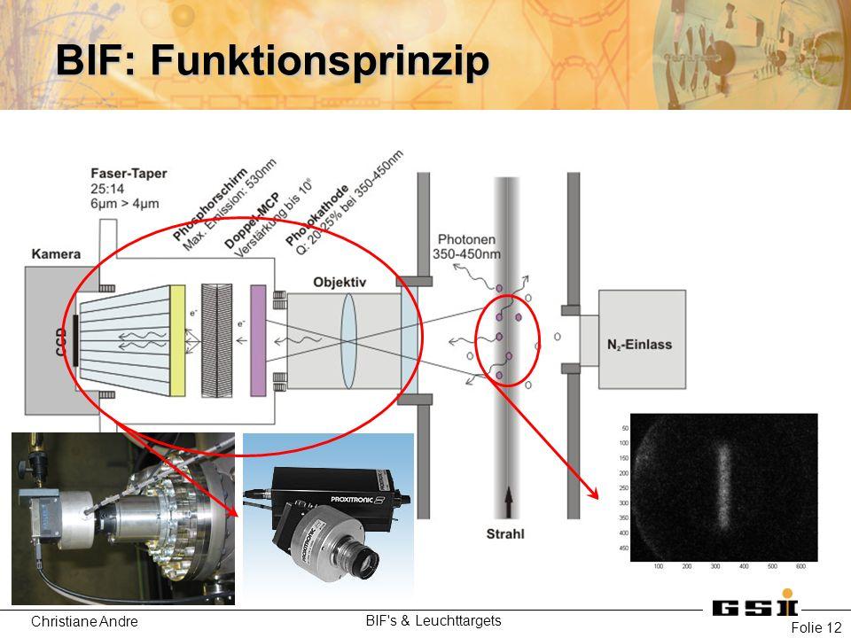 Christiane Andre BIF s & Leuchttargets Folie 12 BIF: Funktionsprinzip