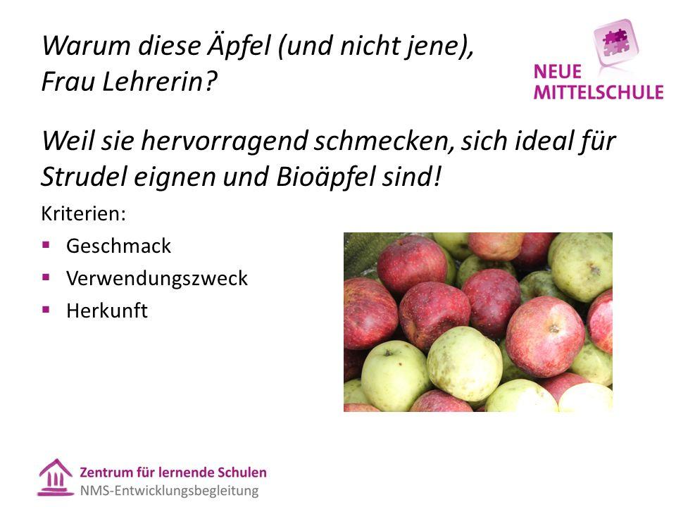 Warum diese Äpfel (und nicht jene), Frau Lehrerin? Weil sie hervorragend schmecken, sich ideal für Strudel eignen und Bioäpfel sind! Kriterien:  Gesc