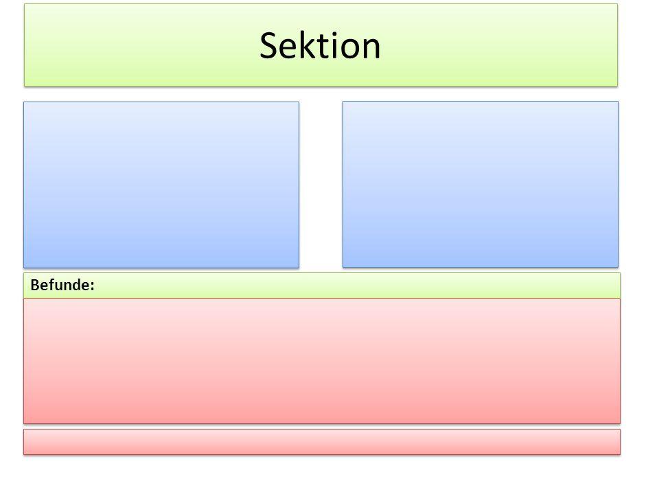 Befunde: Sektion