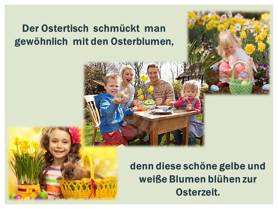 Der Ostertisch schmückt man gewöhnlich mit den Osterblumen, denn diese schöne gelbe und weiße Blumen blühen zur Osterzeit.