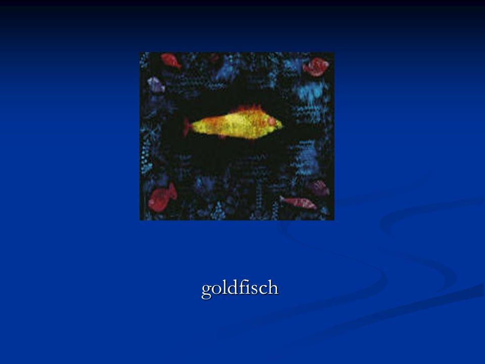 goldfisch goldfisch