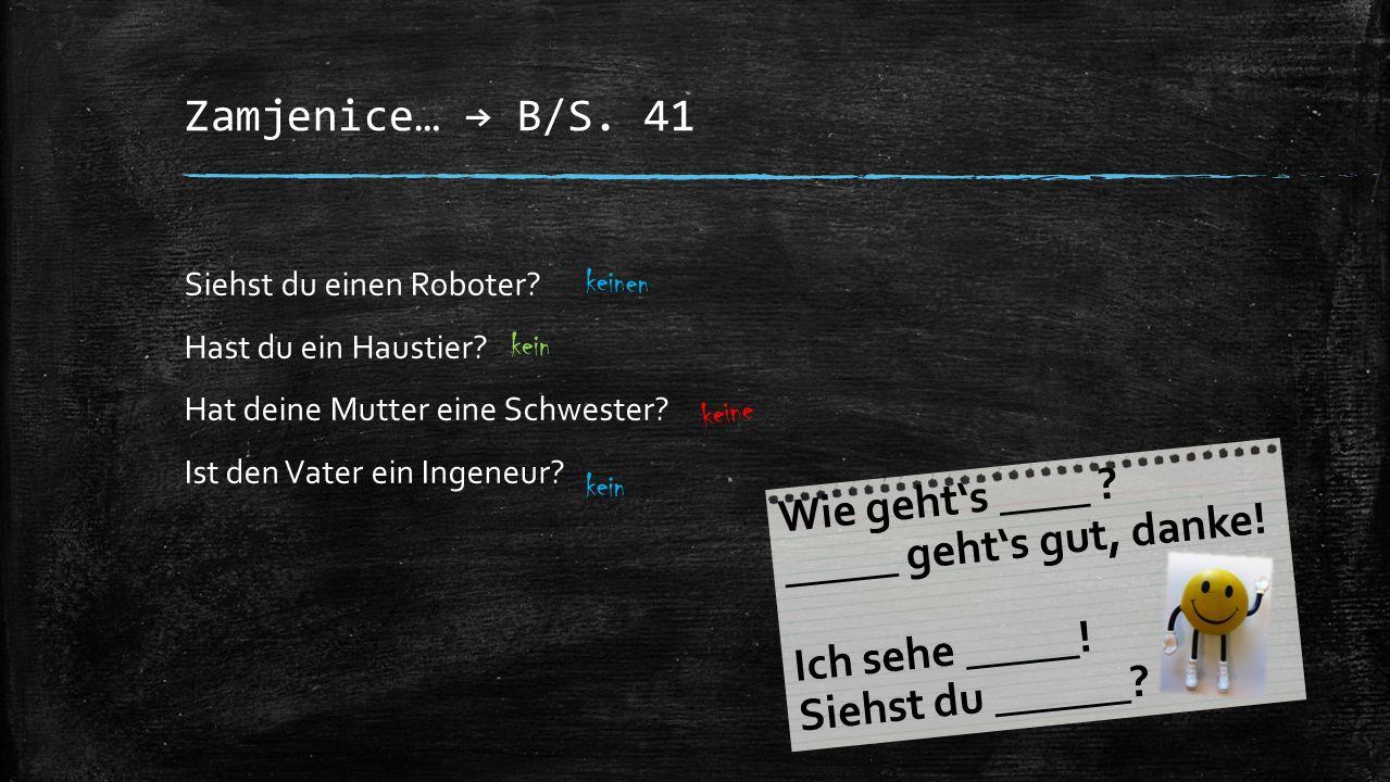 Zamjenice… → B/S. 41 Siehst du einen Roboter? Hast du ein Haustier? Hat deine Mutter eine Schwester? Ist den Vater ein Ingeneur? keinen kein keine kei