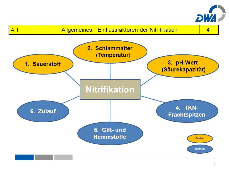Nitrifikation 1. Sauerstoff 2. Schlammalter (Temperatur ) 5. Gift- und Hemmstoffe 3. pH-Wert (Säurekapazität) 4.TKN- Frachtspitzen 6. Zulauf Abwasser