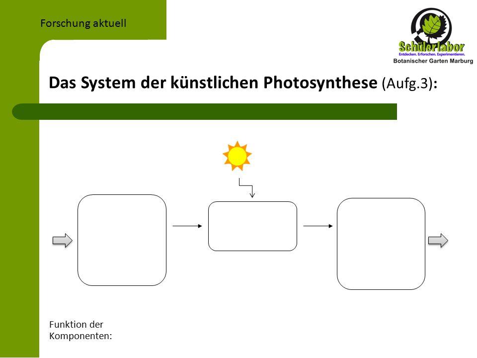 Das System der künstlichen Photosynthese (Aufg.3): Forschung aktuell Funktion der Komponenten: