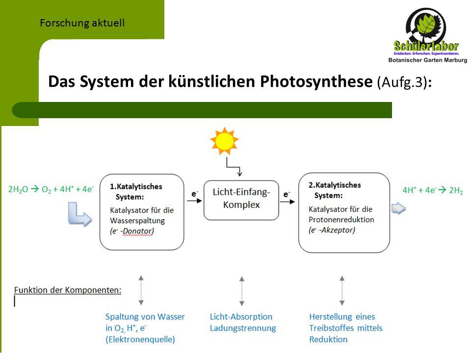 Das System der künstlichen Photosynthese (Aufg.3): Forschung aktuell