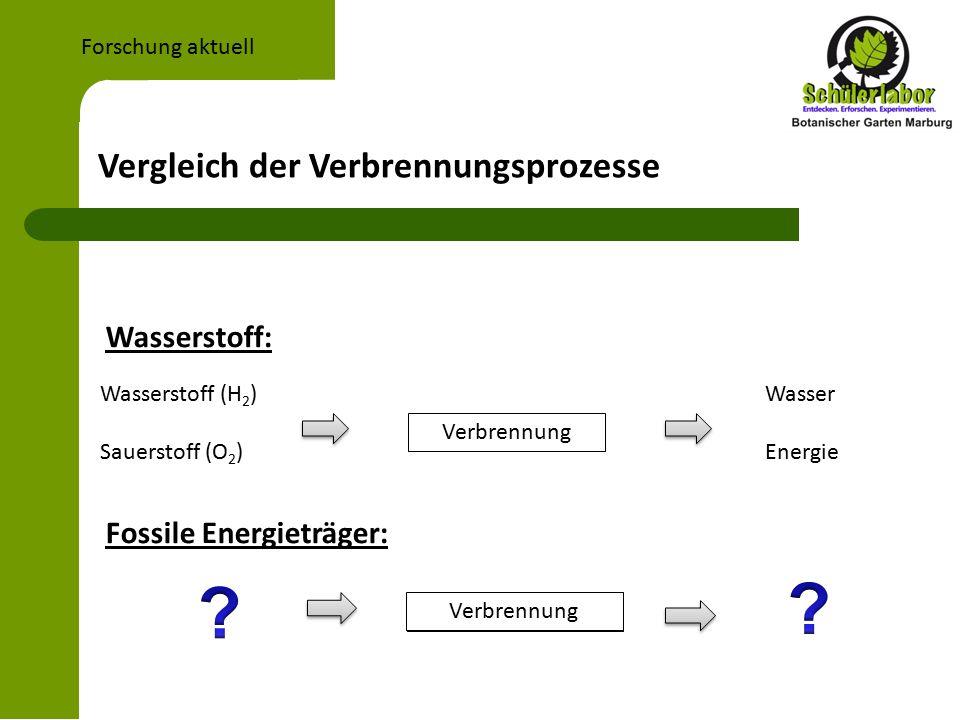 Wasserstoff: Fossile Energieträger: Vergleich der Verbrennungsprozesse Forschung aktuell Verbrennung Wasserstoff (H 2 ) Sauerstoff (O 2 ) Wasser Energie Verbrennung