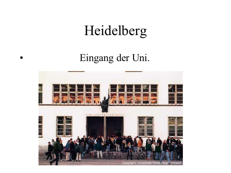 Heidelberg Eingang der Uni.