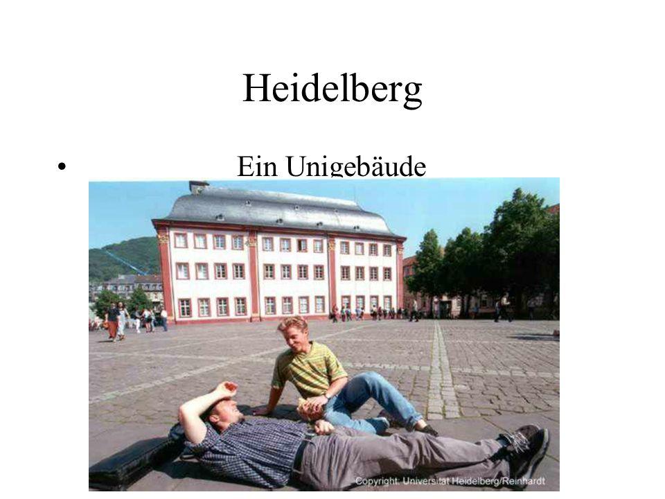Heidelberg Ein Unigebäude