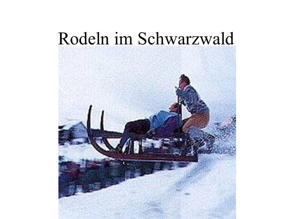 Rodeln im Schwarzwald