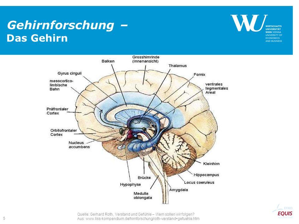 5 Gehirnforschung – Das Gehirn Quelle: Gerhard Roth, Verstand und Gefühle – Wem sollen wir folgen? Aus: www.liss-kompendium.de/hirnforschung/roth-vers