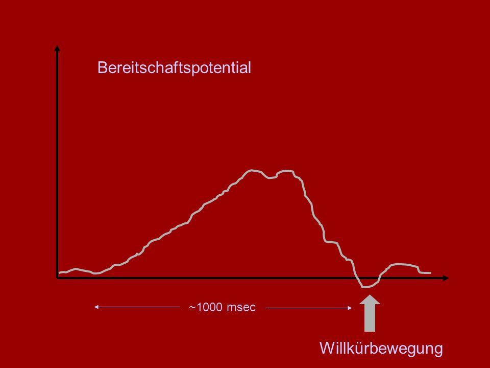 Willkürbewegung ~1000 msec Bereitschaftspotential