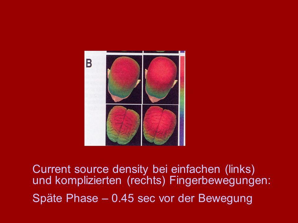 Current source density bei einfachen (links) und komplizierten (rechts) Fingerbewegungen: Späte Phase – 0.45 sec vor der Bewegung