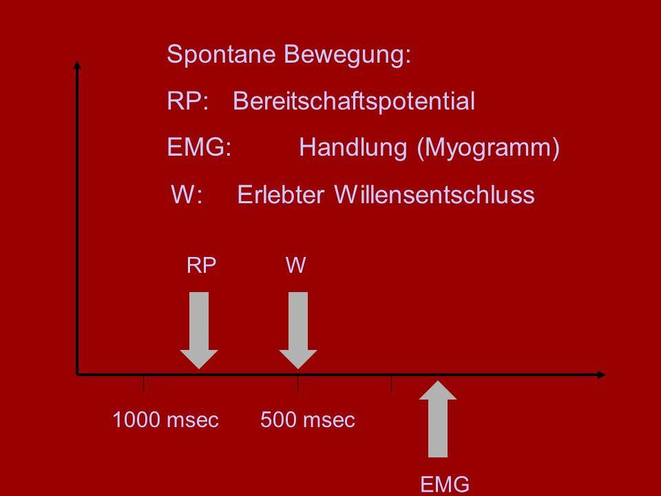 Spontane Bewegung: RP:Bereitschaftspotential EMG: Handlung (Myogramm) RP EMG 1000 msec W 500 msec W:Erlebter Willensentschluss
