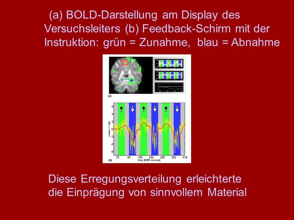 (a) BOLD-Darstellung am Display des Versuchsleiters (b) Feedback-Schirm mit der Instruktion: grün = Zunahme, blau = Abnahme Diese Erregungsverteilung