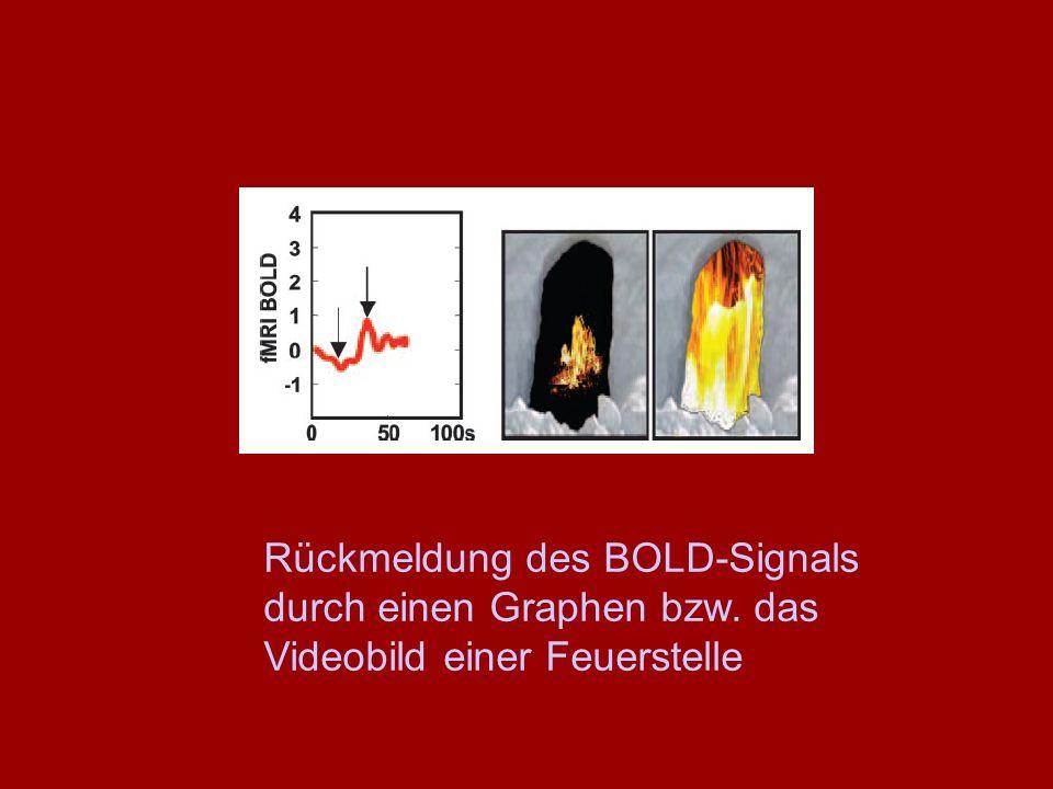 Rückmeldung des BOLD-Signals durch einen Graphen bzw. das Videobild einer Feuerstelle