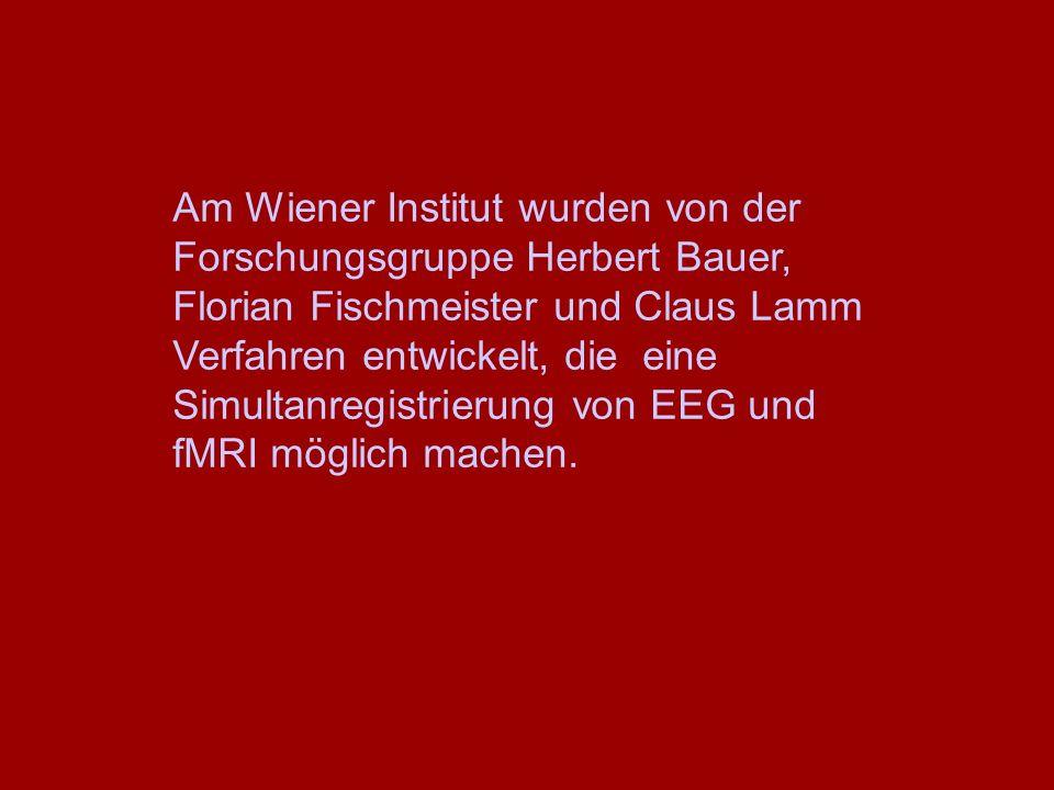 Am Wiener Institut wurden von der Forschungsgruppe Herbert Bauer, Florian Fischmeister und Claus Lamm Verfahren entwickelt, die eine Simultanregistrie