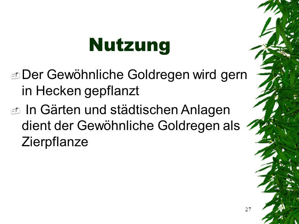 26 Fortpflanzung und Geschlechtigkeit  Der Gewöhnliche Goldregen ist zwittrig und einhäusig  Er pflanzt sich durch Fremd- oder Tierbestäubung fort