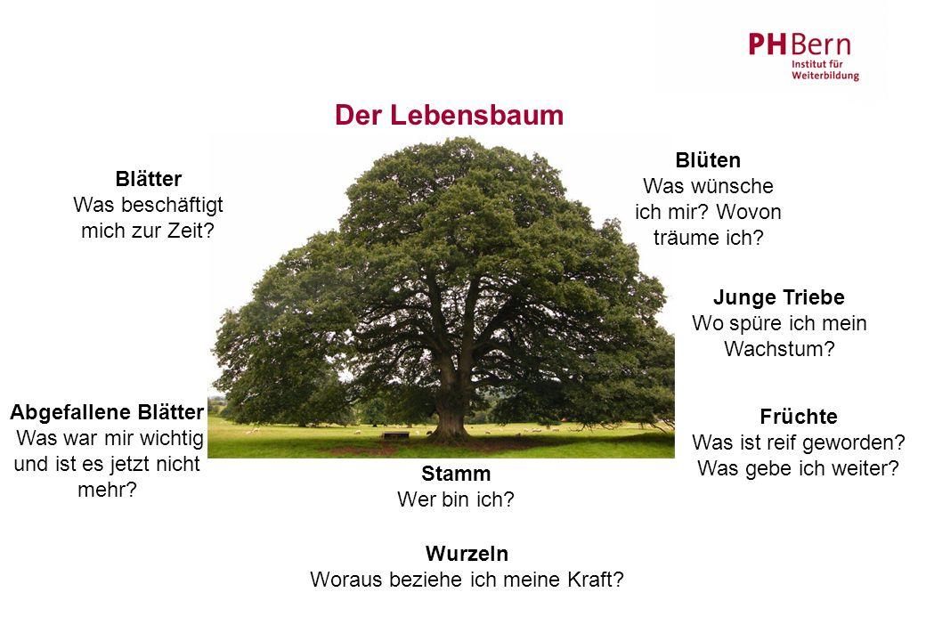 Der Lebensbaum Blätter Was beschäftigt mich zur Zeit.