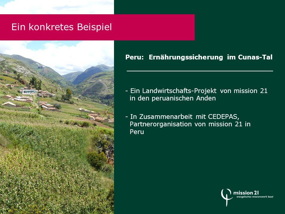 Ein konkretes Beispiel Peru: Ernährungssicherung im Cunas-Tal - Ein Landwirtschafts-Projekt von mission 21 in den peruanischen Anden - In Zusammenarbeit mit CEDEPAS, Partnerorganisation von mission 21 in Peru